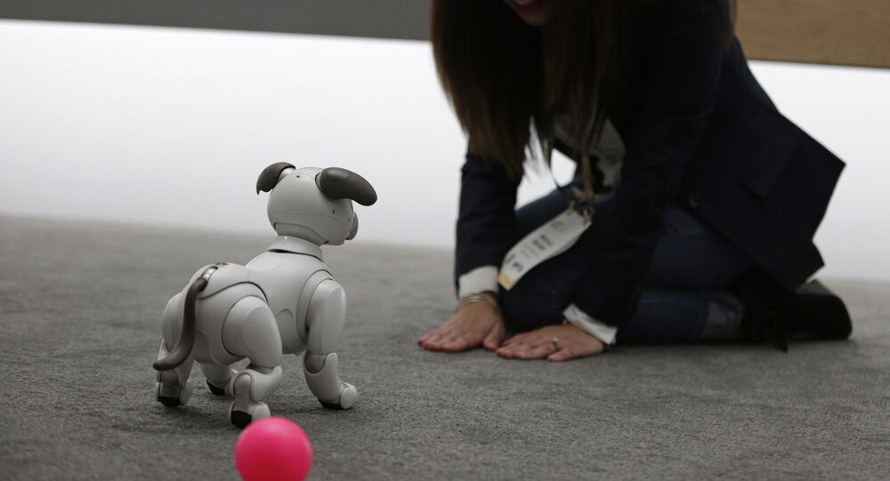 The Aibo robot dog is on display at the Sony booth after a news conference at CES International, Monday, Jan. 8, 2018, in Las Vegas.