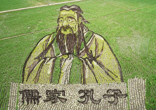 Chine: des rizières transformées en tableaux géants