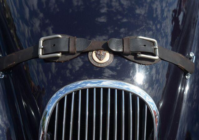 Капот автомобиля Jaguar XK120