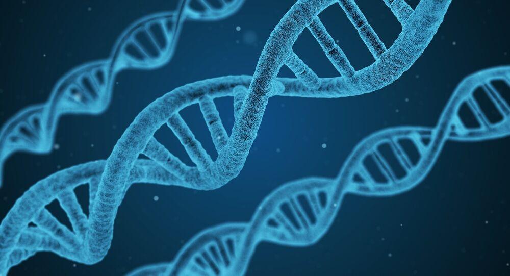 Des gènes (Image d'illustration)