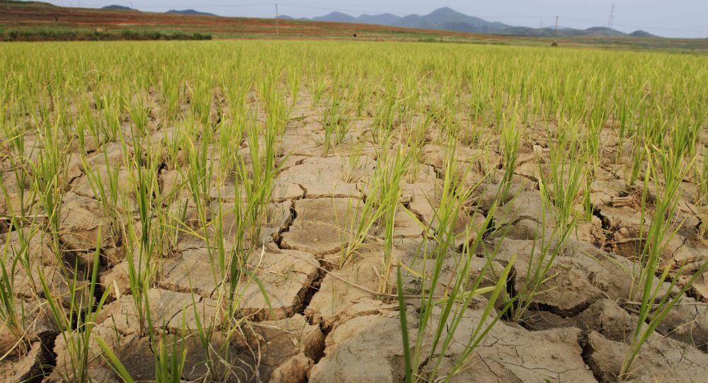 De fortes sécheresses