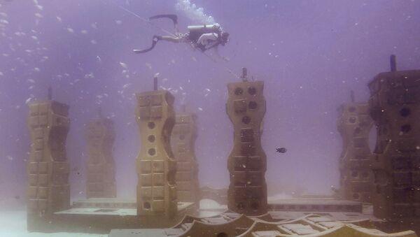 Neptune Memorial Reef - Sputnik France