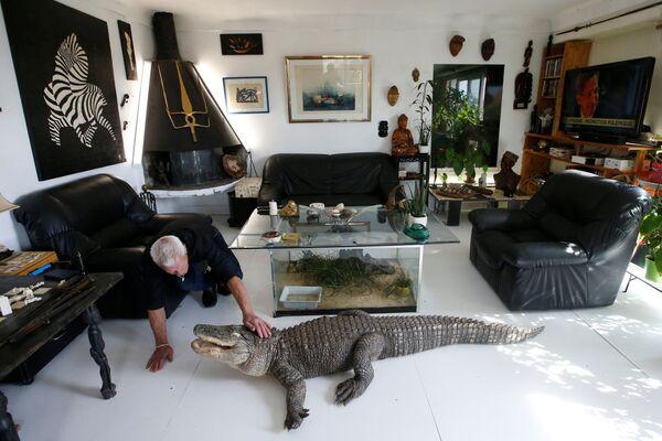 Mes amis les animaux: ce Français a 400 reptiles chez lui! - Sputnik France