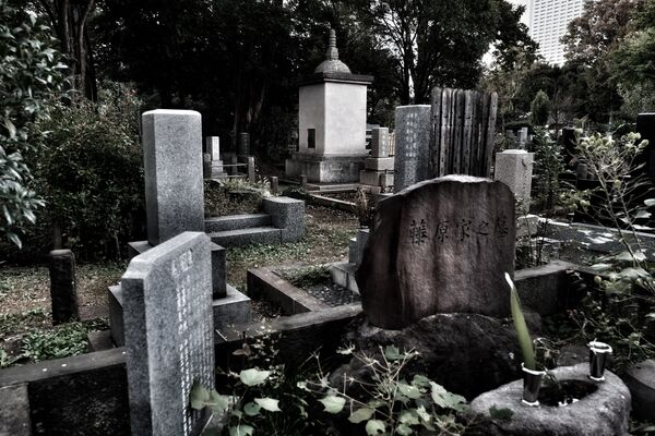 Le cimetière Zōshigaya - Sputnik France