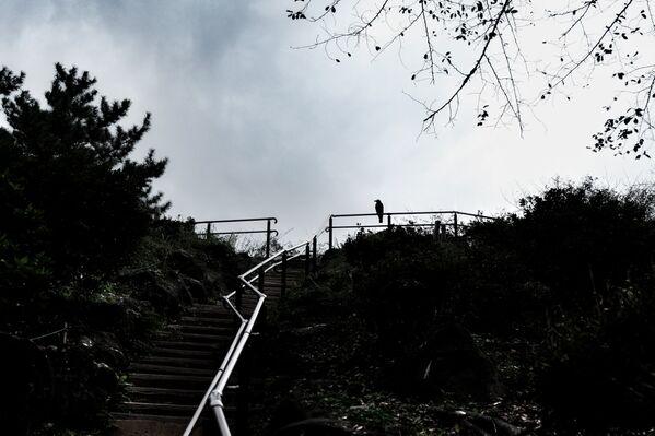 Le mont Hakone - Sputnik France