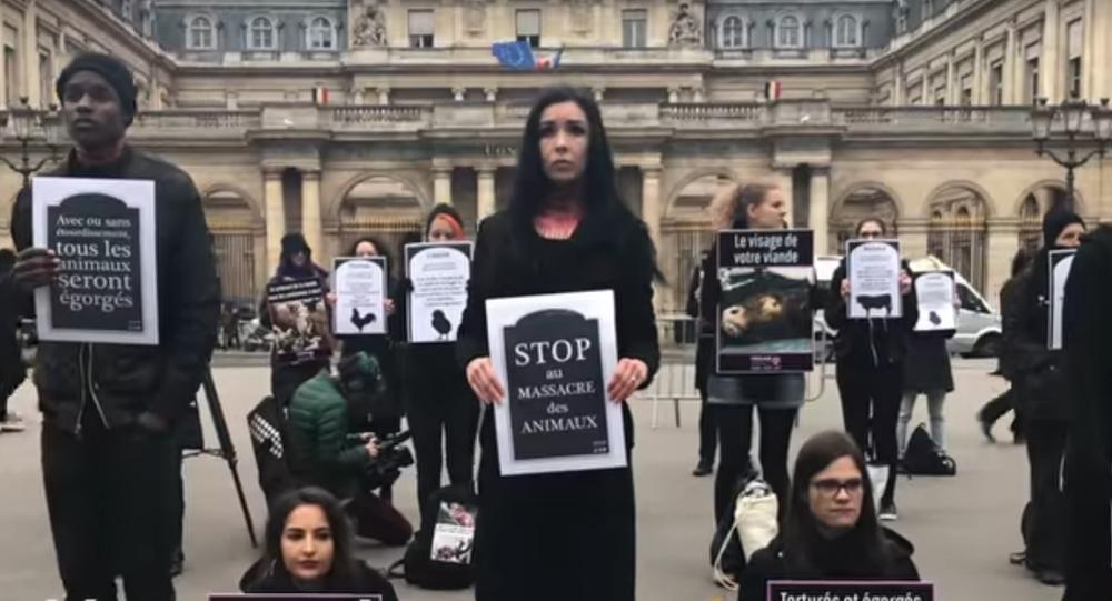 Des vegan imitent des «égorgements» pour dénoncer les cruautés faites aux animaux
