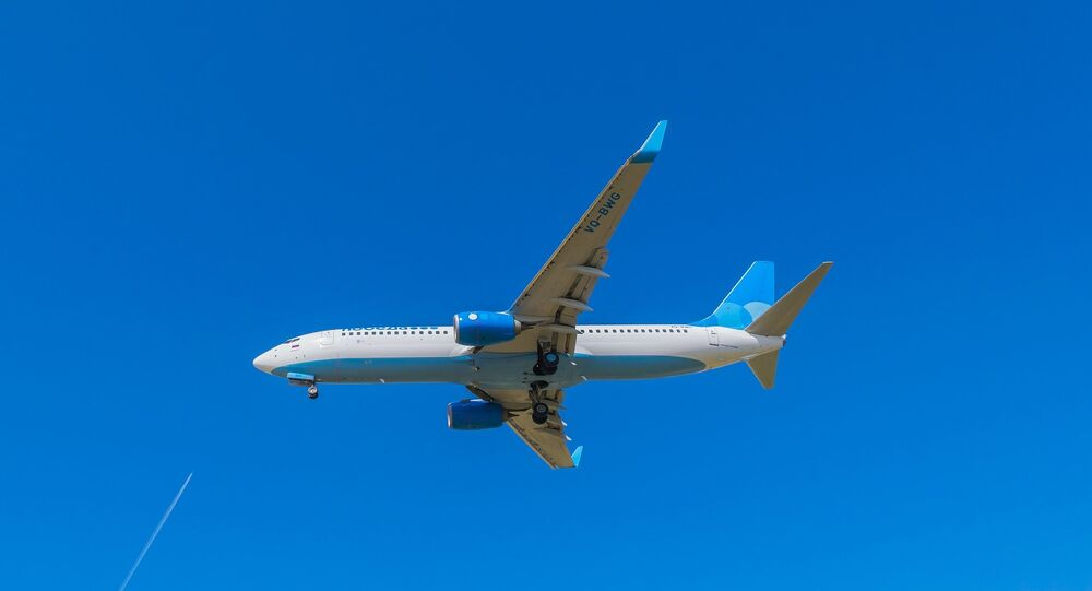 Un Boeing 737 (image d'illustration)