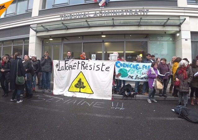 Soutien aux militants de la forêt de Romainville devant le tribunal administratif de Montreuil le 7 novembre 2018