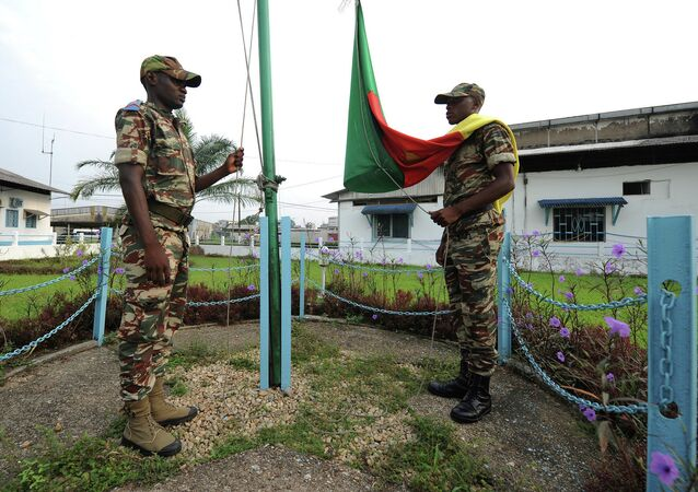 Cameroon has carried out its first-ever airstrikes against Nigeria-based Boko Haram after the terrorist group assaulted five villages and captured a military base in the country's north