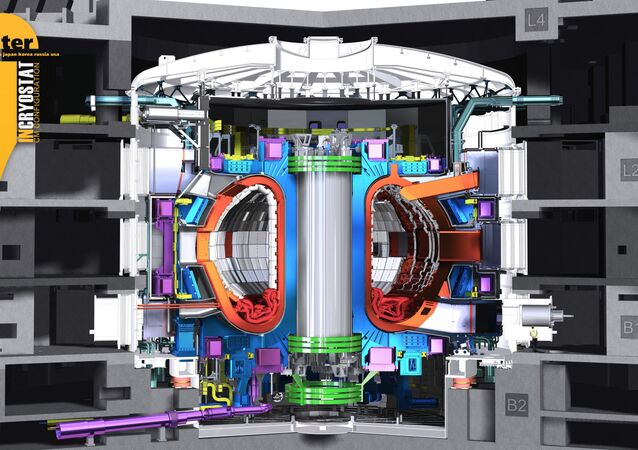 ITER Tokamak (image d'illustration)