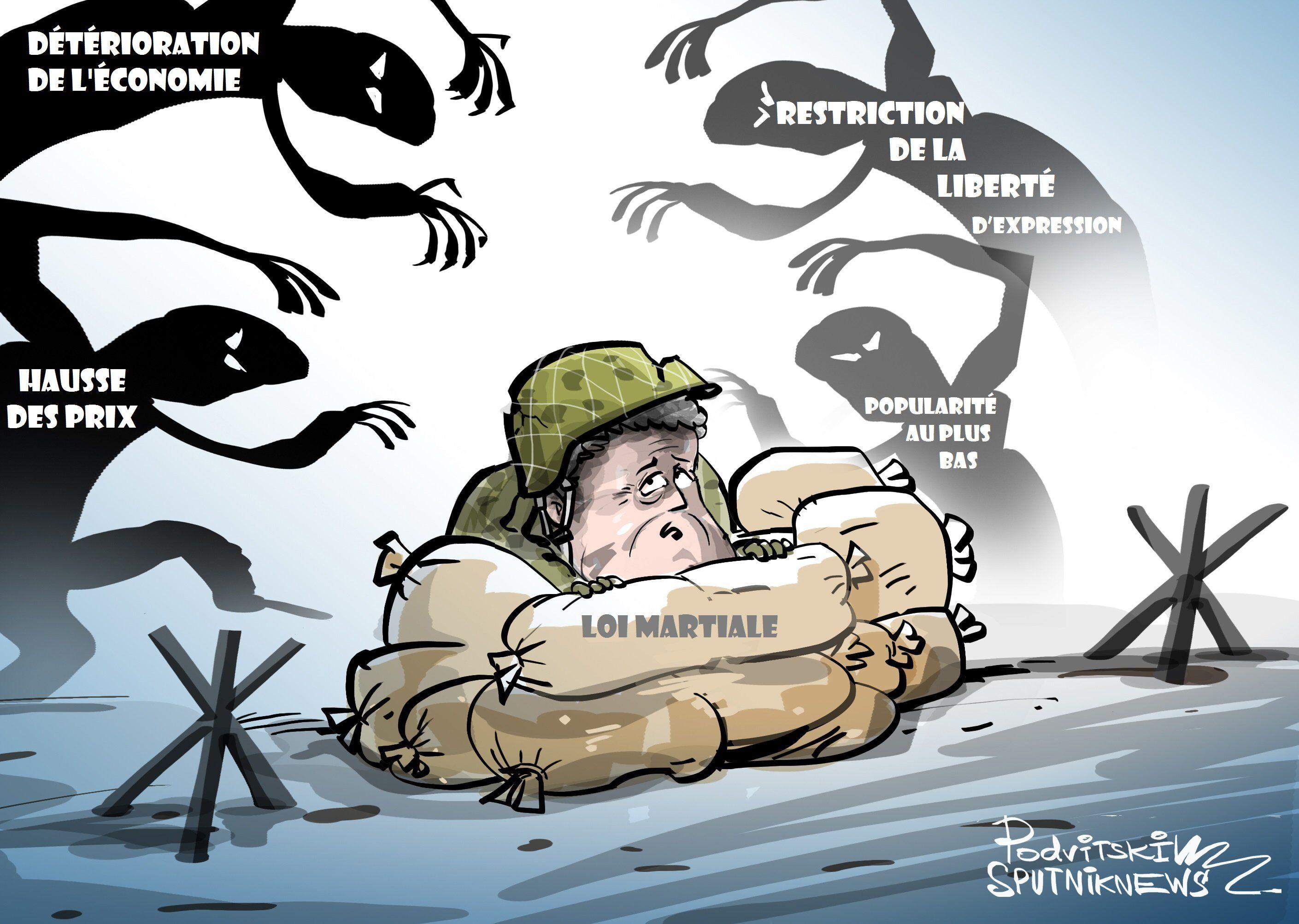 La loi martiale en Ukraine n'est qu'«une démarche préélectorale»