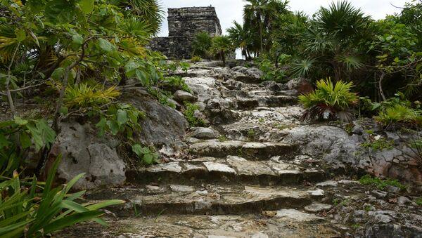 Des ruines mayas (image d'illustration) - Sputnik France
