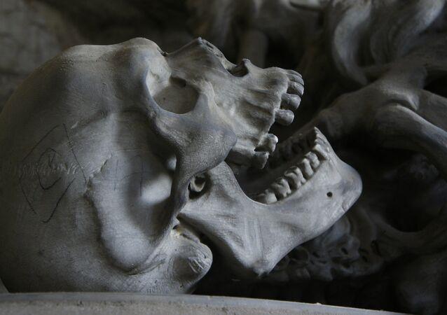 crâne (image d'illustration)