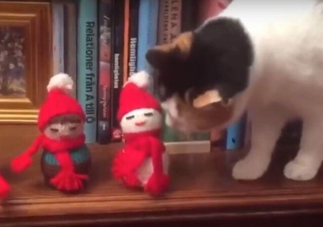 «Joyeux non-sens»: ce chat jette les décorations de Noël