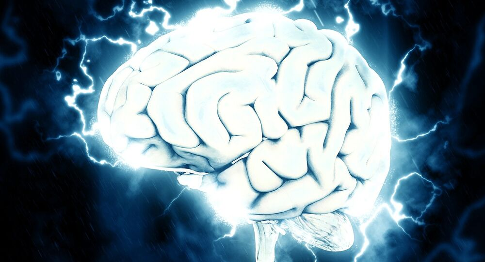 cerveau, image d'illustration