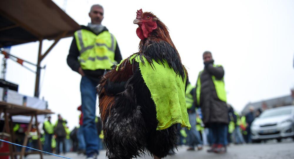 Manifestation des Gilets jaunes à Bourges le 12 janvier