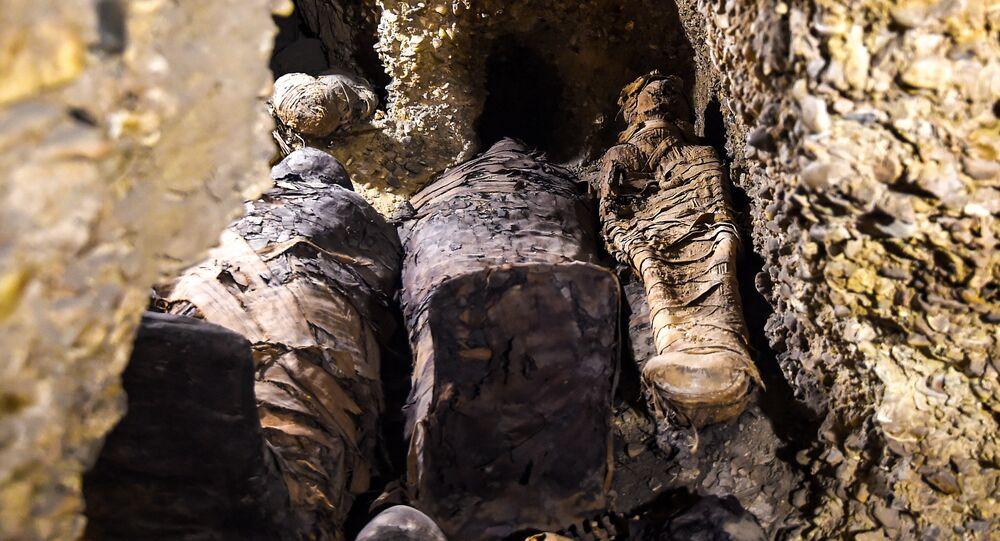 Plus de 40 momies découvertes en Égypte
