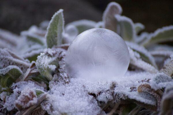 Les images les plus impressionnantes de l'hiver - Sputnik France