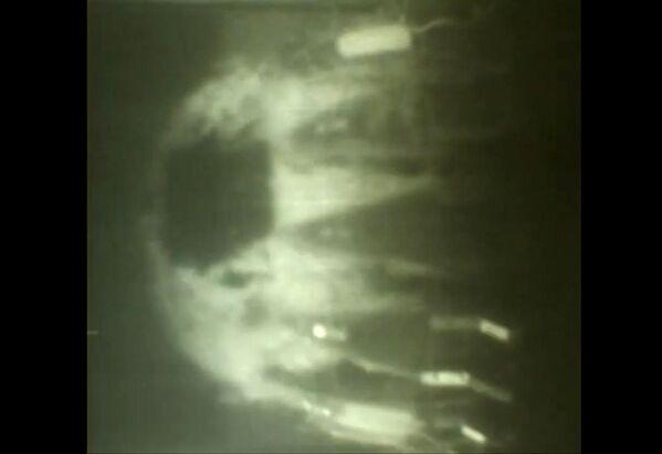 Les essais du système sous-marin polyvalent Poseidon - Sputnik France