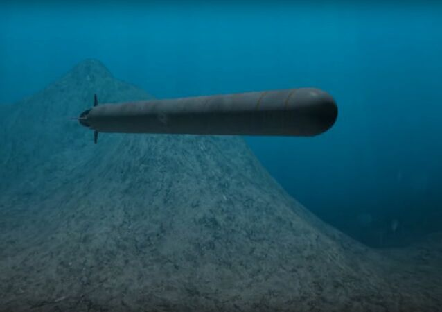 Oceanic multipurpose system equipped with unmanned underwater vehicles