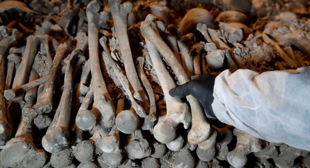 Des os, image d'illustration