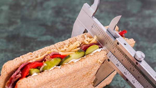 Sandwich - Sputnik France