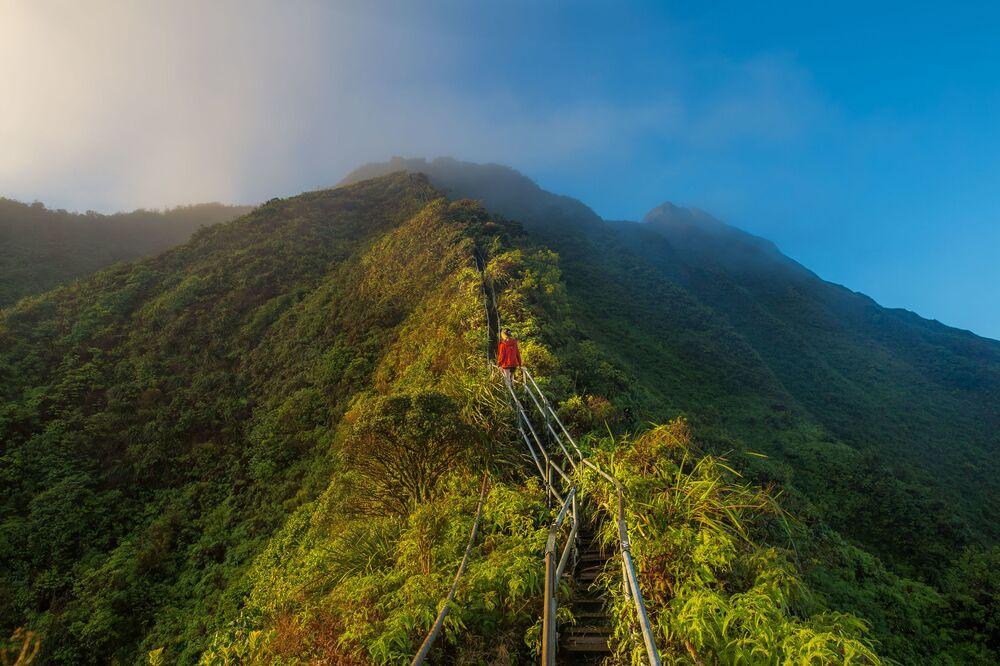 Des escaliers qui donnent le vertige