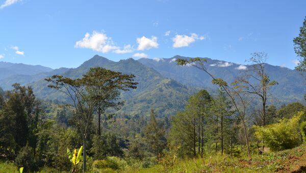 Папуа-Новая Гвинея - Sputnik France
