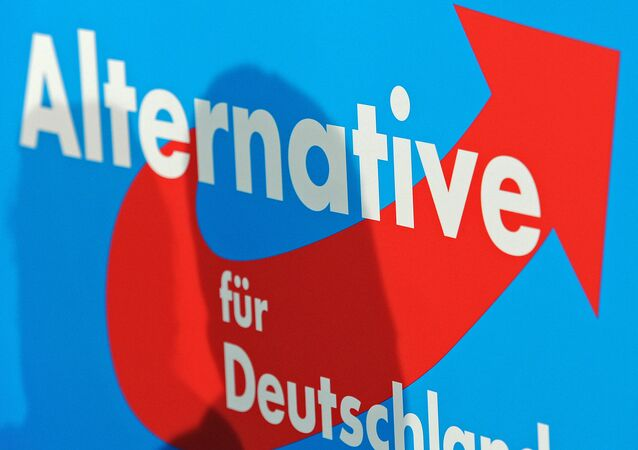 AfD-Logo (Archiv)