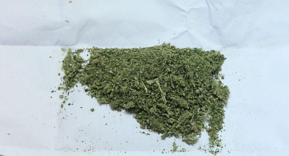 De la marijuana, image d'illustration