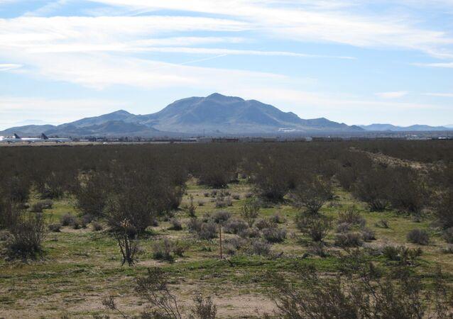 Le désert du Mojave