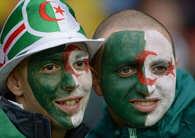 Des supporters de l'équipe d'Algérie