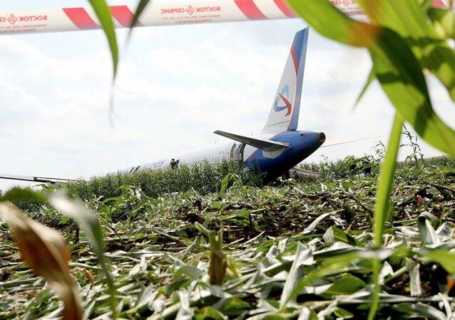 Atterrissage d'urgence d'un Airbus А-321 près de Moscou