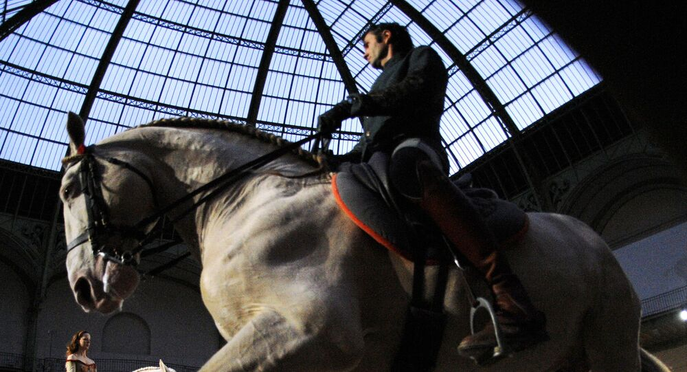 Un spectacle equestre (photo d'archives)