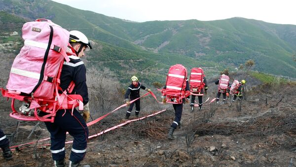 Des sapeurs-pompiers (image d'illustration) - Sputnik France