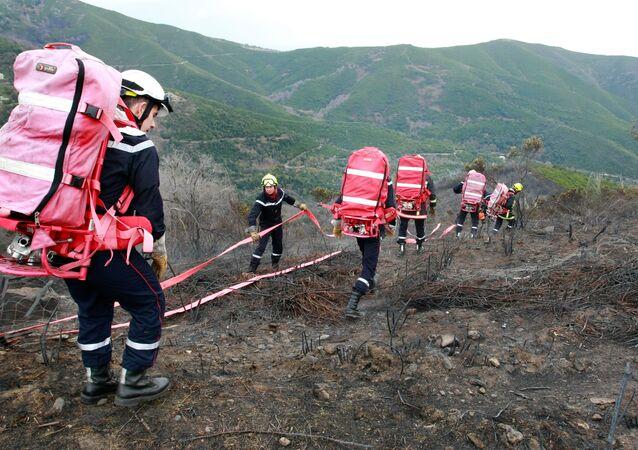 Des sapeurs-pompiers (image d'illustration)
