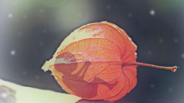 Bébé, image d'illustration - Sputnik France