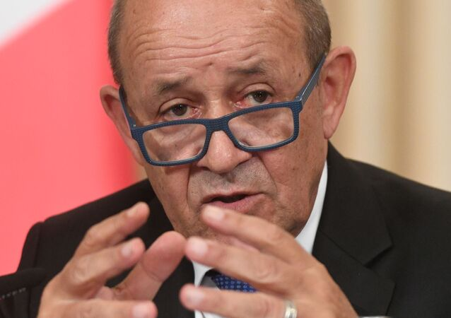 Jean-Yves Le Drian (archive photo)