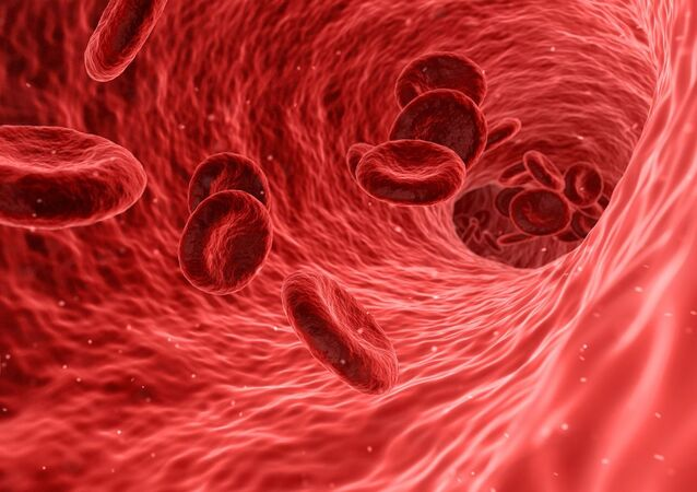 Клетки крови