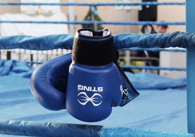 Gants de boxe (image d'illustration)