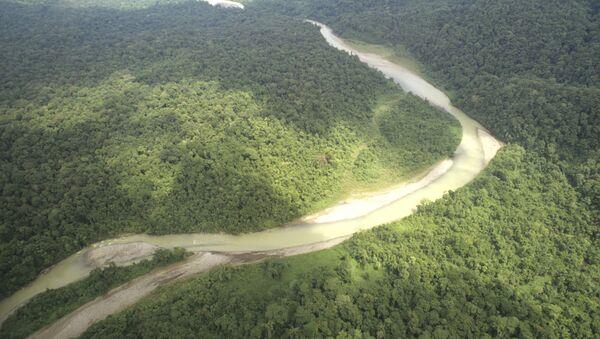Amazonie - Sputnik France