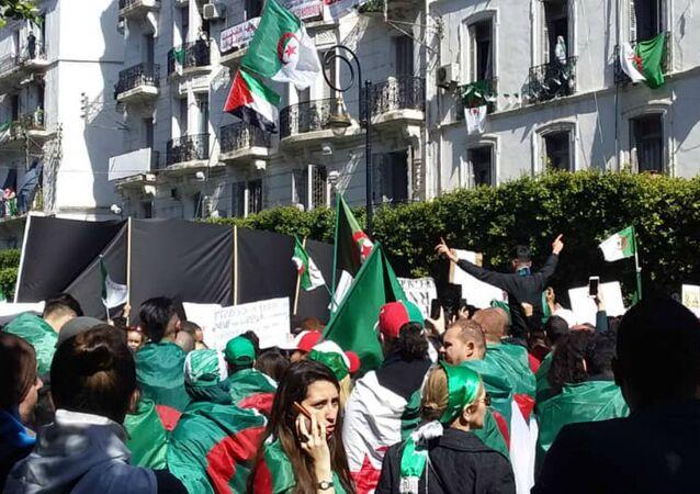 Manifestation anti-pouvoir le 23 août 2019, à Alger