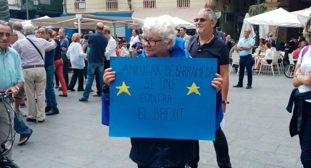 Une manifestation anti-Brexit à La Linea de la Concepcion