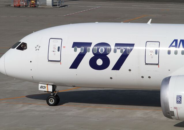 Un Boeing 787 Dreamliner (archive photo)