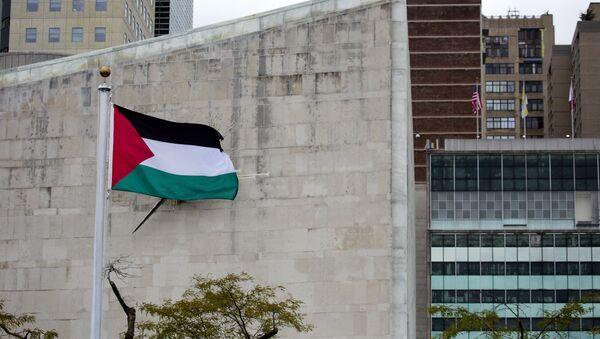 drapeau palestinien - Sputnik France