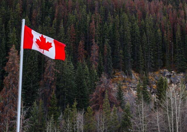 Drapeau canadien en Alberta