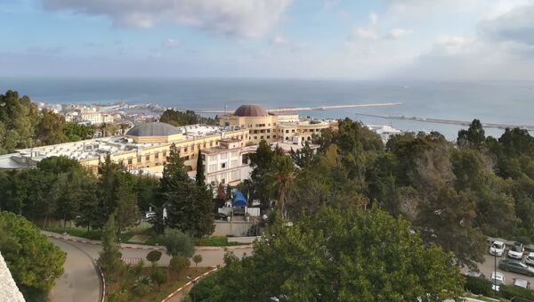Vue de la ville d'Alger - Sputnik France