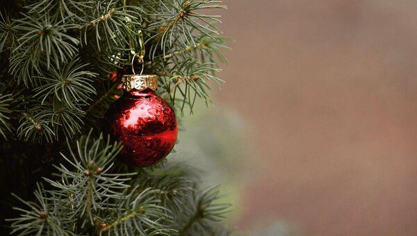 Une boule de Noël - Sputnik France