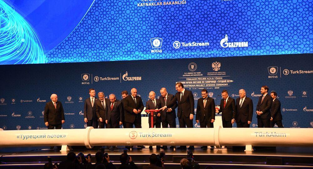Lancement officiel du gazoduc Turkish Stream à Istanbul