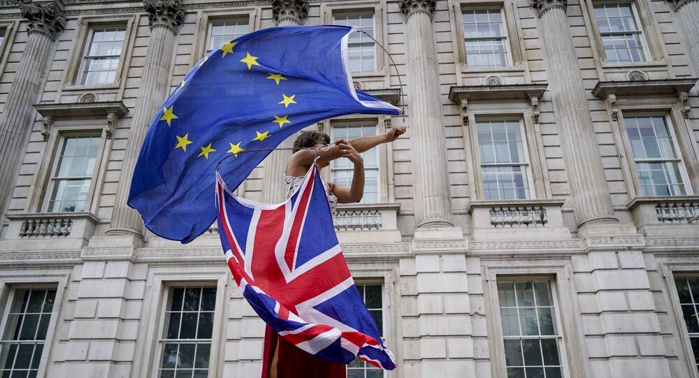 Un manifestant anti-Brexit